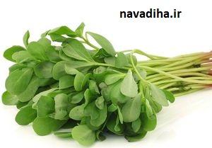 مصرف این سبزی درمان ۹۹ درد است