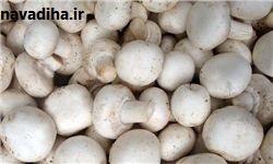 هشدار درباره مصرف قارچهای فلهای و غیر پرورشی